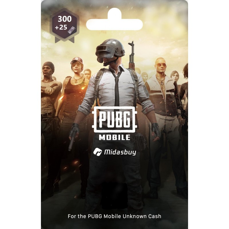 300+25 UC PUBG Game Points - (Delivery by E-mail, K-net payments only)